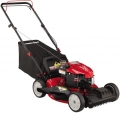 "21"" 190CC Self-Propelled Mower"