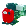 "Red Lion 5Hp 2"" Pump"